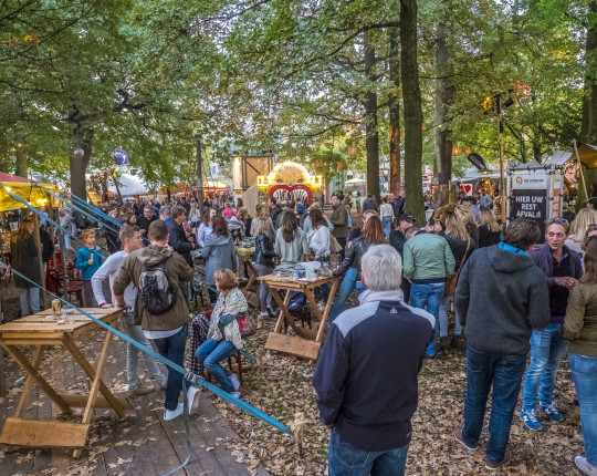 [video] Opbouw Roots in the Woods in volle gang